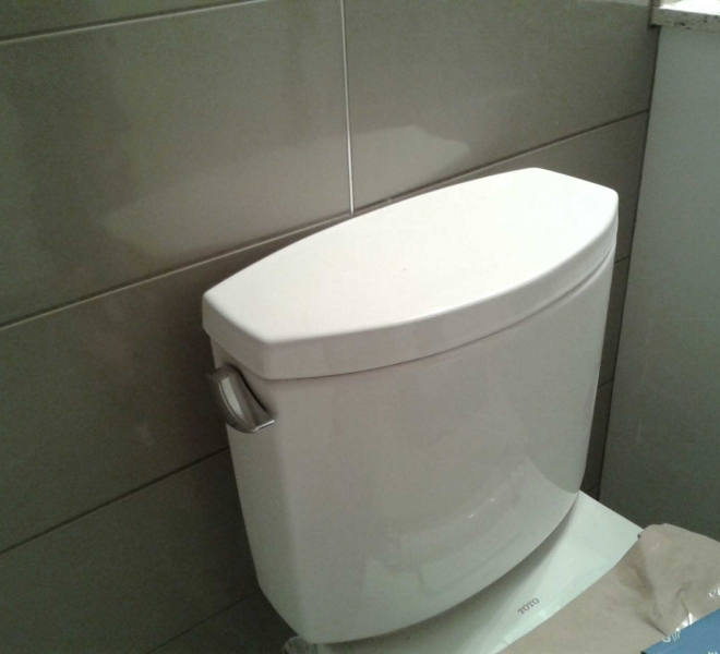Toilet-Close-Up