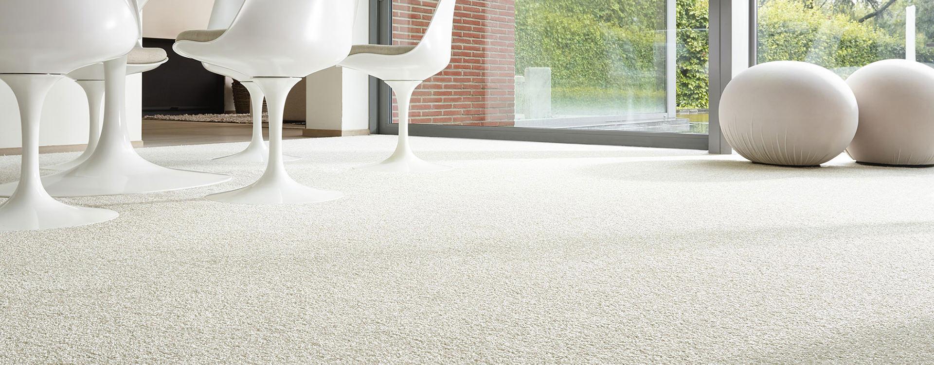 carpet banner optmzd