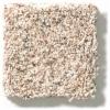 BIRCH BARK - 00115 CARMEL COAST