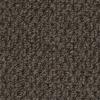 Brown Olive H578 Lilium II W3466