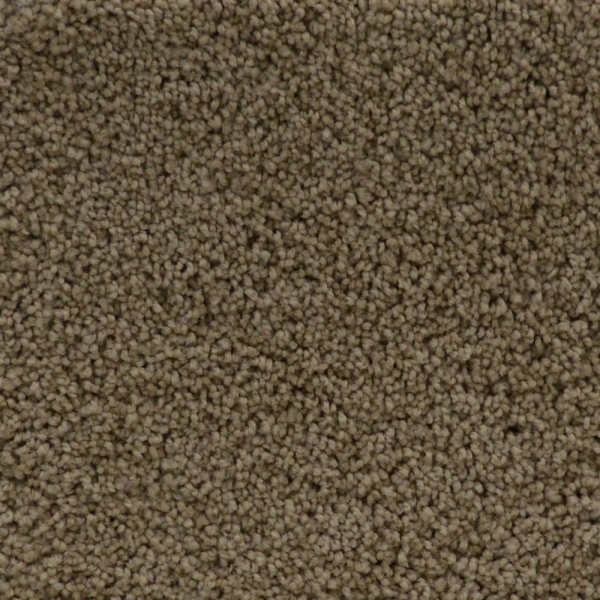 Contemporary Beige H933 Blissful Caress W2747