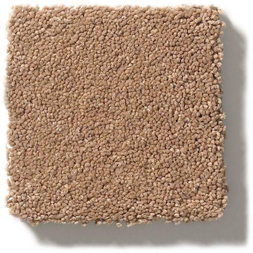 DESERT VIEW - 00665 CLASSIC BEAUTY