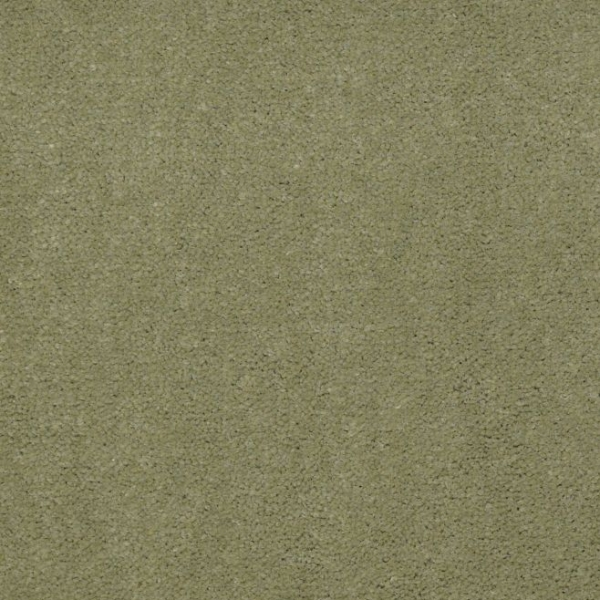 ISLAND GREEN #56370