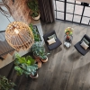 LLP336 Distressed American Pine View