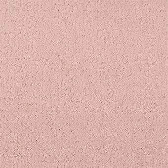 Rosedale - 205 Matisse - 9493