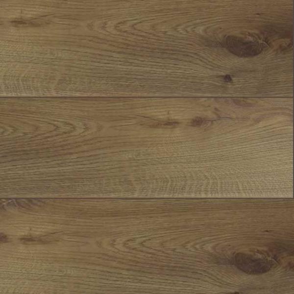 ip01-seymour-oak