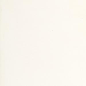 1111 VIVID WHITE