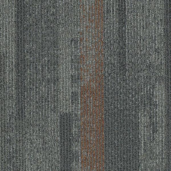 DISTRICT 13219 Elevation