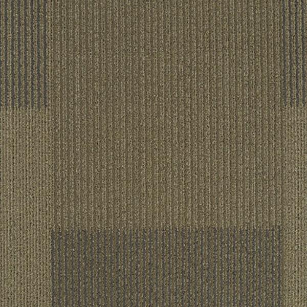 DOMAIN 83002 Terrain II