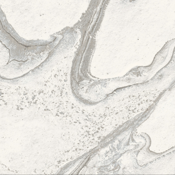 LIQUID SKY DETAIL