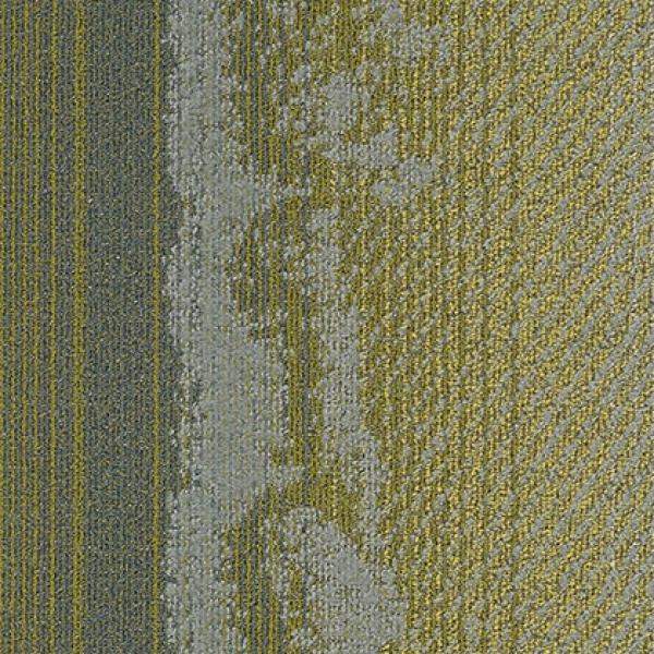 OPRY 12328 Seattle
