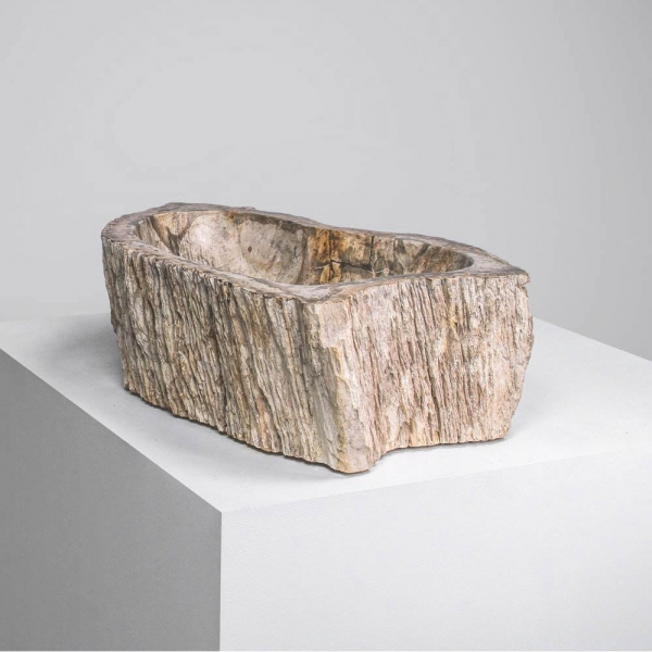 QUARI PETRIFIED WOOD BALI 01 ELEMENTAL WOOD COLOR