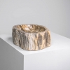 QUARI PETRIFIED WOOD BALI 02 ELEMENTAL WOOD COLOR